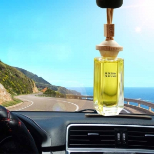China hot selling car scent diffuser supplier