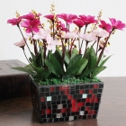 China Living room decoration square mosaic glass flower pot wholesale factory